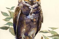 Owl_sm