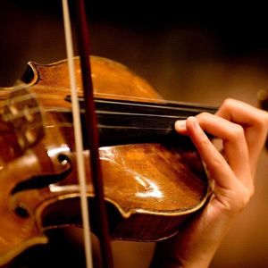 Beginner Violin for Adults