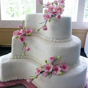 Intermediate Cake Decorating